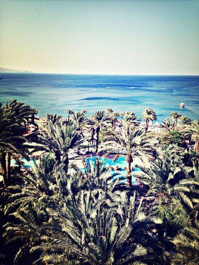 Summerparadise RedSea Bluesky Vacance