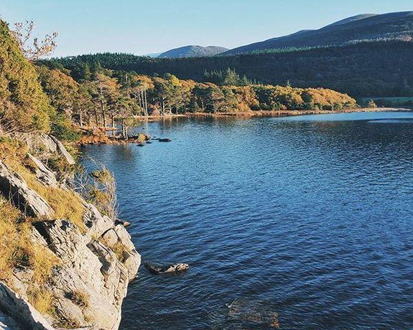 I adore this place. VSCO Vscocam Galaxys6 Insta_ireland Loveireland Loves_ireland Killarney  Lake Forest Landscape Visitkerry Ireland Kerry