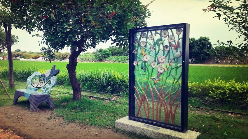 Good Day For Outdoor Art Amazing Taiwan