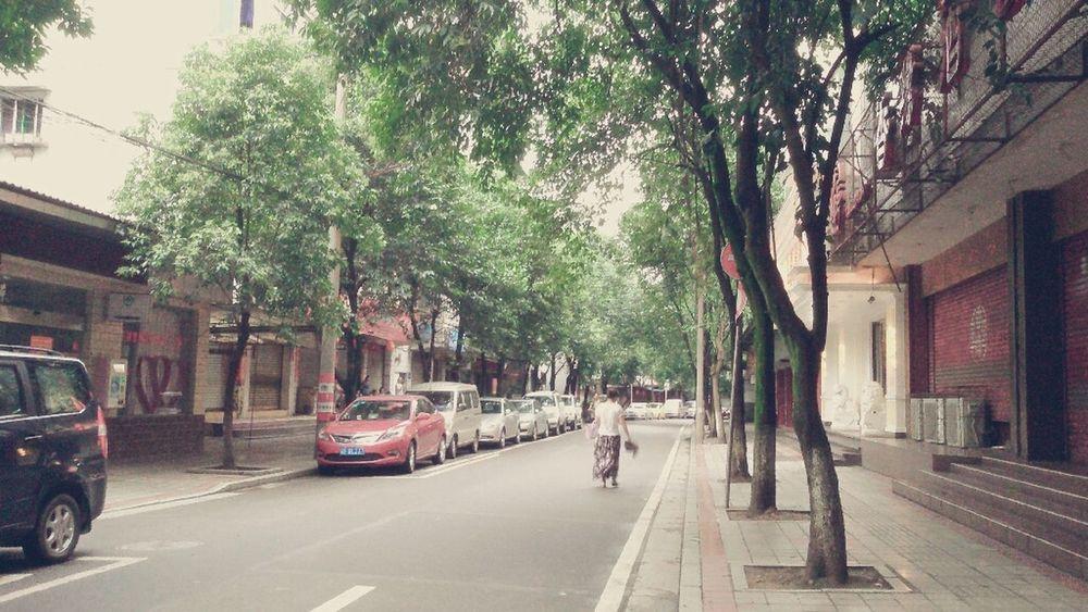 Good Morning City Enjoy The Silence Tree Alley