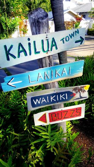 Signboard Taking Photographs Colors Summer Beachside Happiness Walking EyeEm Gallery Landscape_Collection Nature_collection CaptureTheMoment Eyeemphotography Island EyeEm Nature Lover Eye4photography  Beach Colorful Hawaii USA Sea Eyem Gallery Eye4photography  Day Walk Beachphotography Lanikai
