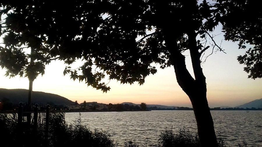 Light Colours Blue Cooper Pamvotis Lake Ioannina, Greece Evening Light Pamvotis Lakeside Tree Water Sunset City Lake Silhouette Reflection Tree Trunk Nautical Vessel Branch Lakeshore Calm Waterfront Tranquil Scene Reflection Lake Tranquility Standing Water