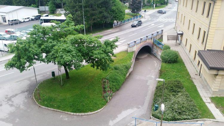 City Tree Road Road Sign Car Land Vehicle High Angle View Street City Street City Life