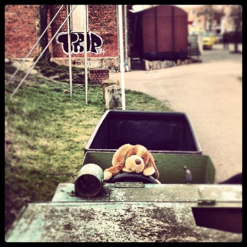 All aboard the Puppy Train ! Conducter Outside dogsofinstagram stuffedanimal cute instabest instamood instacute ilovemypuppy hipster grunge indie cool lüneburg hamburg beagle