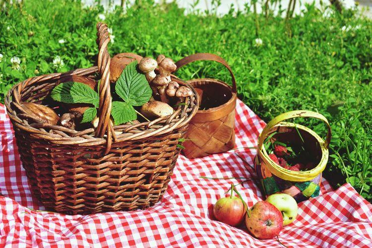 Fruits in basket on field