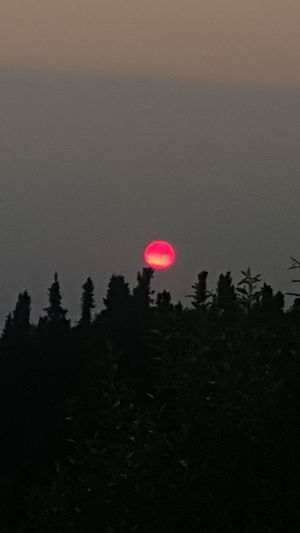 Red Redsunset Beauty In Nature Sky Tranquility Alaska Is Where I'm At Neon Life Viewfrommybackyard Myhomealaska