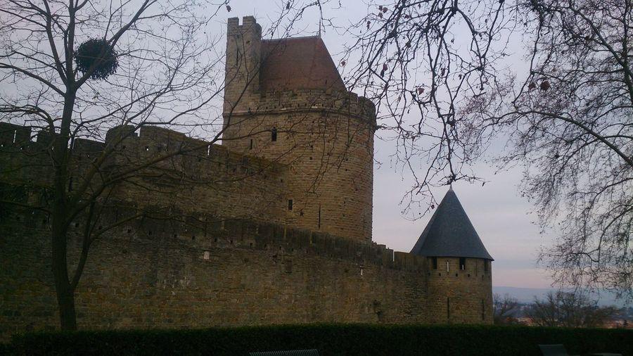 Otra Vista del Castillo de Carcassone