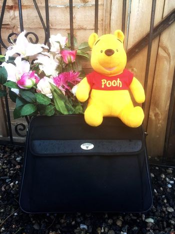 Random Objects Group Of Objects Pooh Bear Flowers Stuffed Toy Outdoors Day No People Bag Gates Residential District