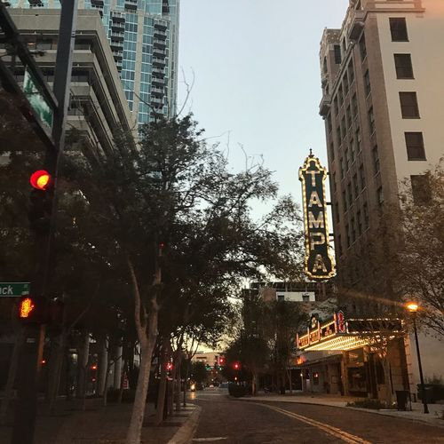 Building Exterior Architecture Built Structure City Tree Street Outdoors Clear Sky Road Skyscraper Sky No People Day Traffic Signal Tampa Downtown Tampa Building Colors Vintage Photo Pretty City Modern Road Photography Vintage