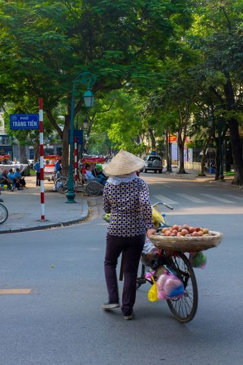 Travel Photography Viet Nam Vietnam Vietnamese Vietnamese Food Bicycle Fruit Seller Fruit Shop Hanoi One Person People Real People Rear View Selling Vietnam Trip