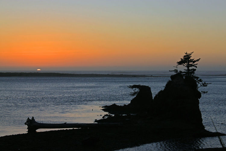 Oregon Coast sunset Beach Beauty In Nature Day Horizon Over Water Idyllic Nature Ocean View Outdoors Photographer Scenics Sea Silhouette Sky Sunset Tranquility Tree Water Landscape_photography