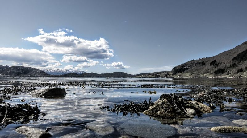 Sea And Sky Seaside Sunny Day Norway Nature Lifjord