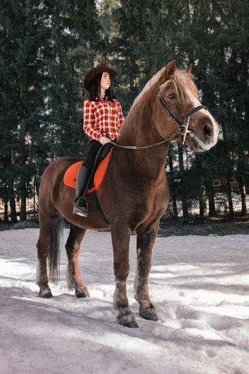 Full length of person riding horse in winter