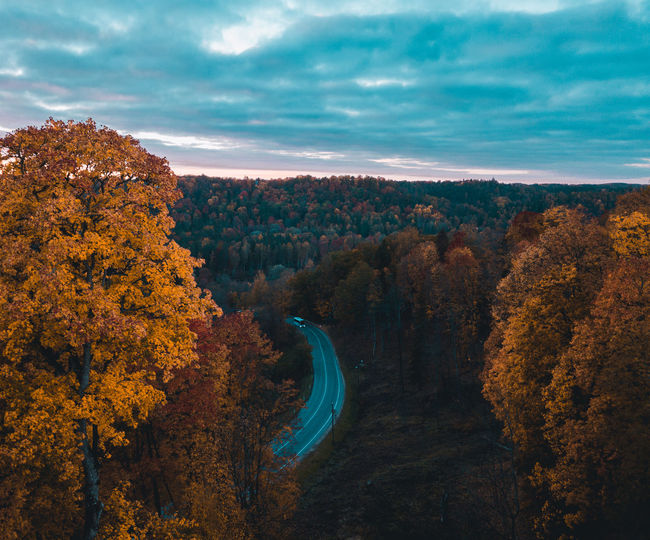 Scenic view of autumn trees against sky