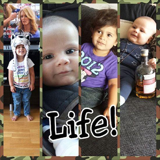 Life Family Stenungsund Ayla  charlie @arpyolsson