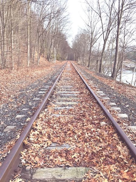 The future has a way of arriving unannounced Railroad Track Autumn Rail Transportation Change The Way Forward Tree Day Railroad Tie Transportation Leaf No People Nature Bare Tree Outdoors Beauty In Nature Sky Lake Sunset Cloud - Sky Tranquil Scene Nature