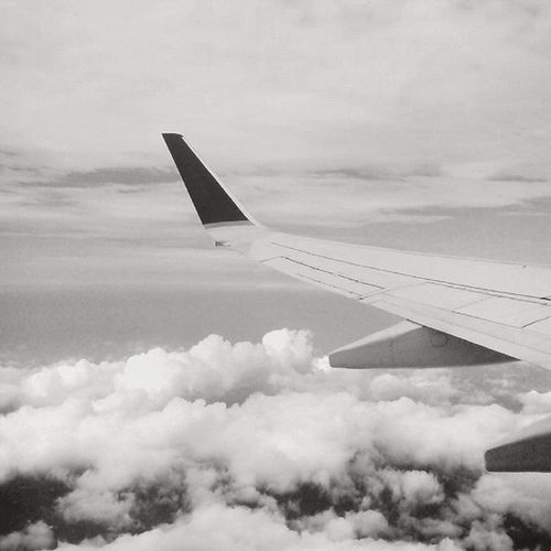I'll pretend I ain't missing u at all Flying Backhome Skylover ✈