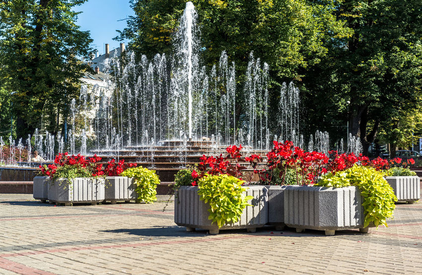 Fountain in Kronvalda Park. Located in the centre of Riga, the capital of Latvia. Riga is European Capital of Culture for 2014 Baltic Countries Beautiful Bright Flower Bed Fountain Latvia Nature Summer Views Summertime Baltic States Beauty In Nature Flower Flowerbeds Flowers Fountain_collection Kronvaldaparks Landmark Nature No People Northern Europe Outdoors Park Park - Man Made Space Riga Summer