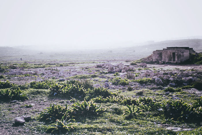 Day Geology Greens Hazey Landscape Nature Old Biuldin Outdoors Plants Rock Solitude Tranquil Scene showcasemarch