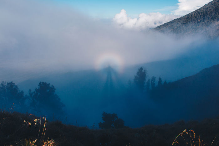 Perspectives On Nature Beauty In Nature Cloud - Sky Day Fog Forest Landscape Mountain Nature No People Outdoors Scenics Sky Tranquil Scene Tranquility Tree Rethink Things
