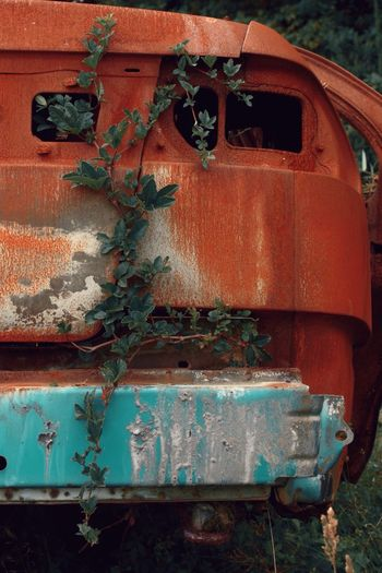 Óxido y maleza ( III ). Abandoned Old Plant Outdoors No People Day Bad Condition Close-up Ivy Nature Transportation Red Light Blue Bad Condition Obsolete Damaged Mode Of Transport Rusty Land Vehicle Metal Antique Consumed By