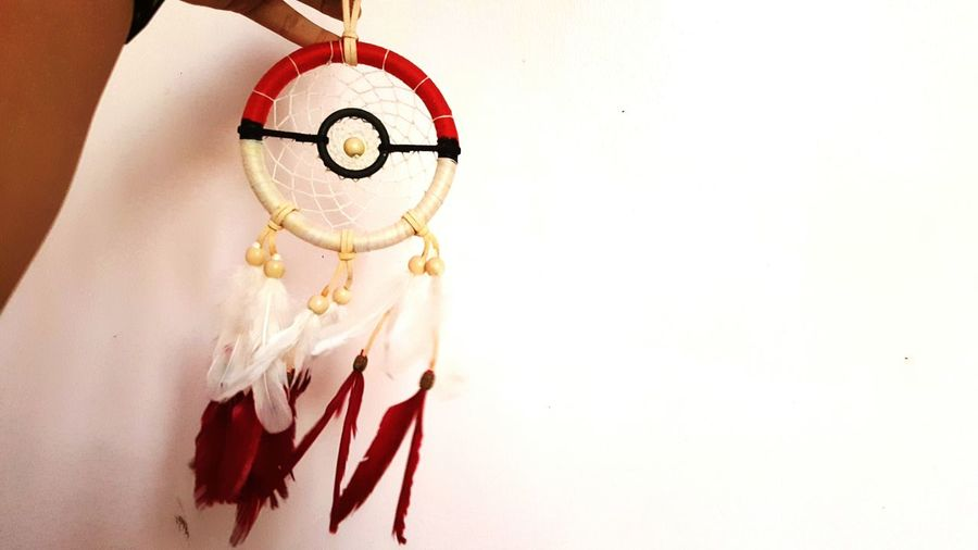Dreams, Gotta catch them all! Pokémon Dreamcatcher Project 365 95/365