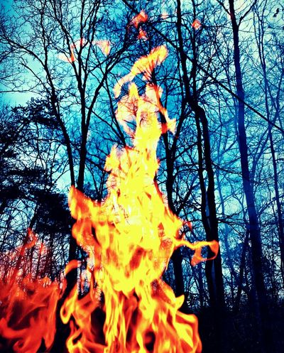 Hot Fire Flame Fire In The Sky Fire Flames