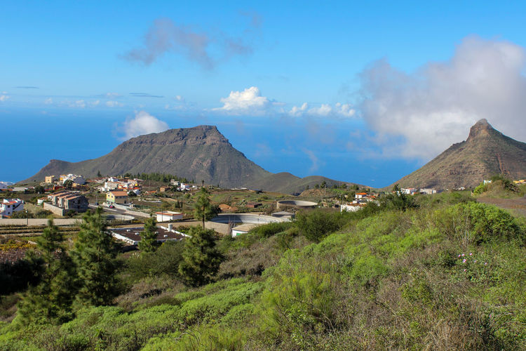 Landscape with green plants in the front, houses and mountains in background on tenerife
