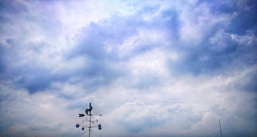 Cloud - Sky Sky Low Angle View Outdoors No People Aerobatics