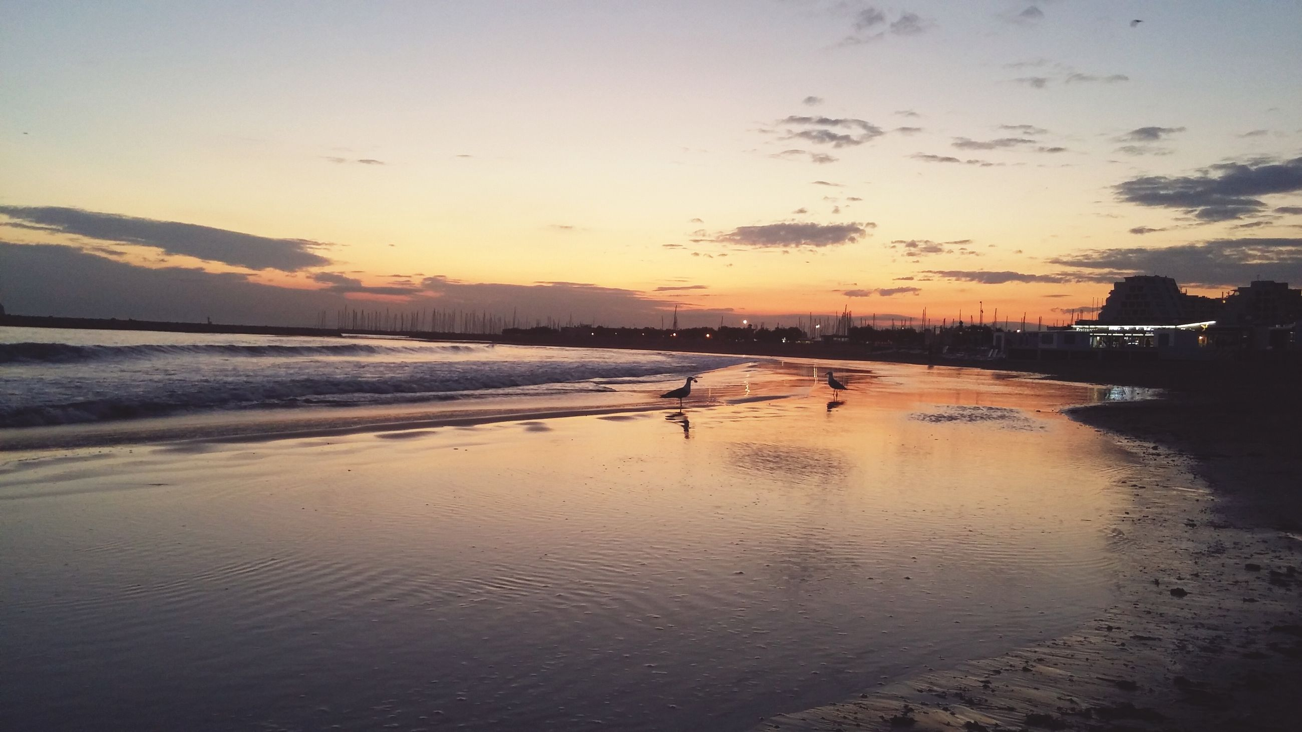 beach, water, sea, sunset, sand, shore, sky, scenics, tranquil scene, tranquility, beauty in nature, nature, coastline, idyllic, incidental people, reflection, wave, dusk, horizon over water, outdoors