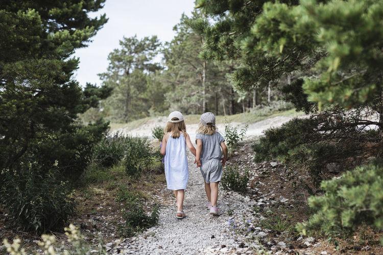 Rear view of women walking in forest