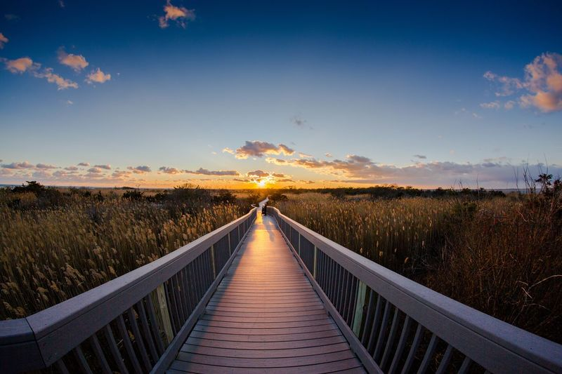 Fire Island Lighthouse, Long Island New York. Nature Sky Scenics Tranquility Outdoors Cloud - Sky Marsh No People Beauty In Nature beach sunset Railing The Way Forward Landscape Grass Day First Eyeem Photo