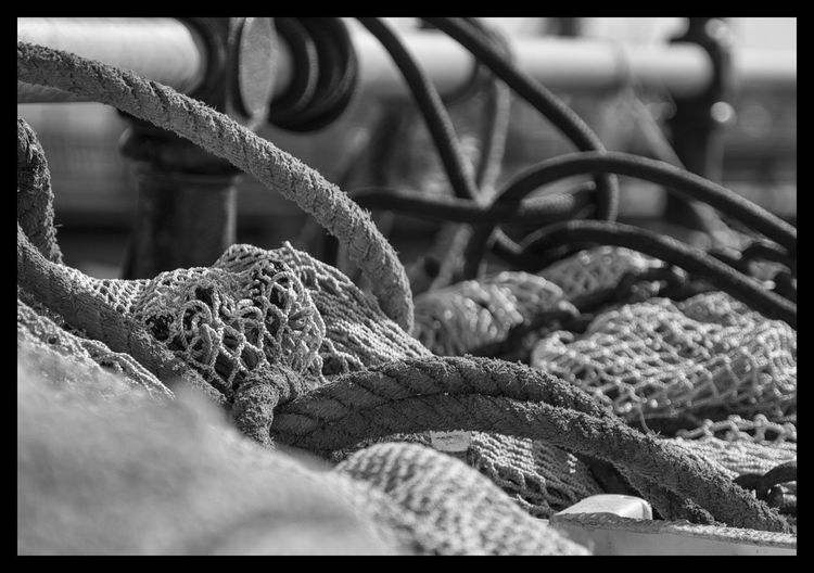 Fishing nets and ropes on Harwich Pier, Essex, England Black And White Black And White Photography Cat Catch Close-up Coast Day England Essex Fishing Equipment Fishing Net Harwich Industry Nets No People Rope