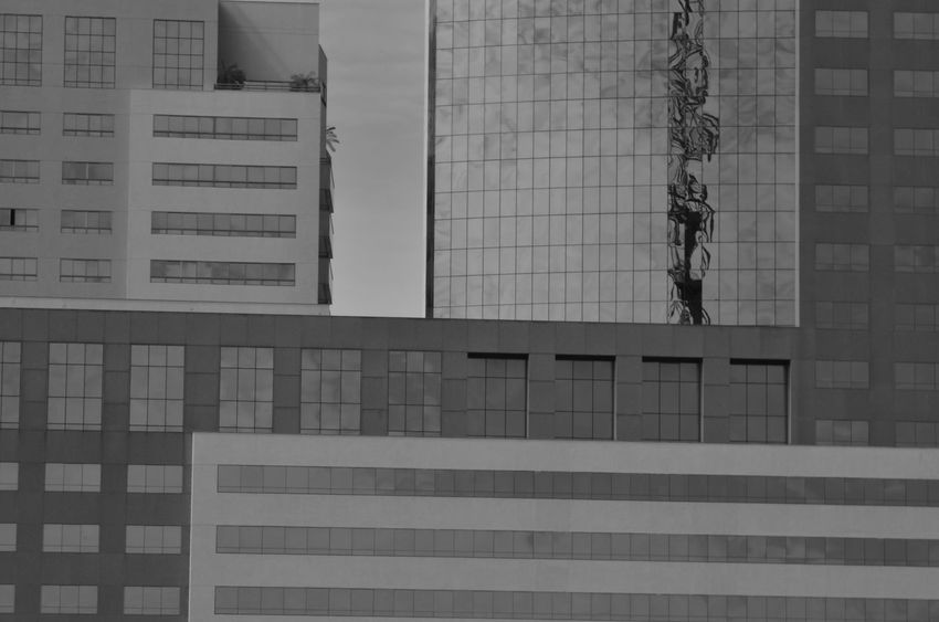 Architecture Blackadnwhite Building Exterior Built Structure City Day Low Angle View Modern Outdoors Skyscraper Window