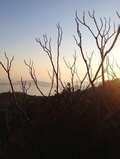 Heart Life Natural Beauty Costa Azzurra La Turbie Heaven Can Wait ✌🏽️ 😎 Mare
