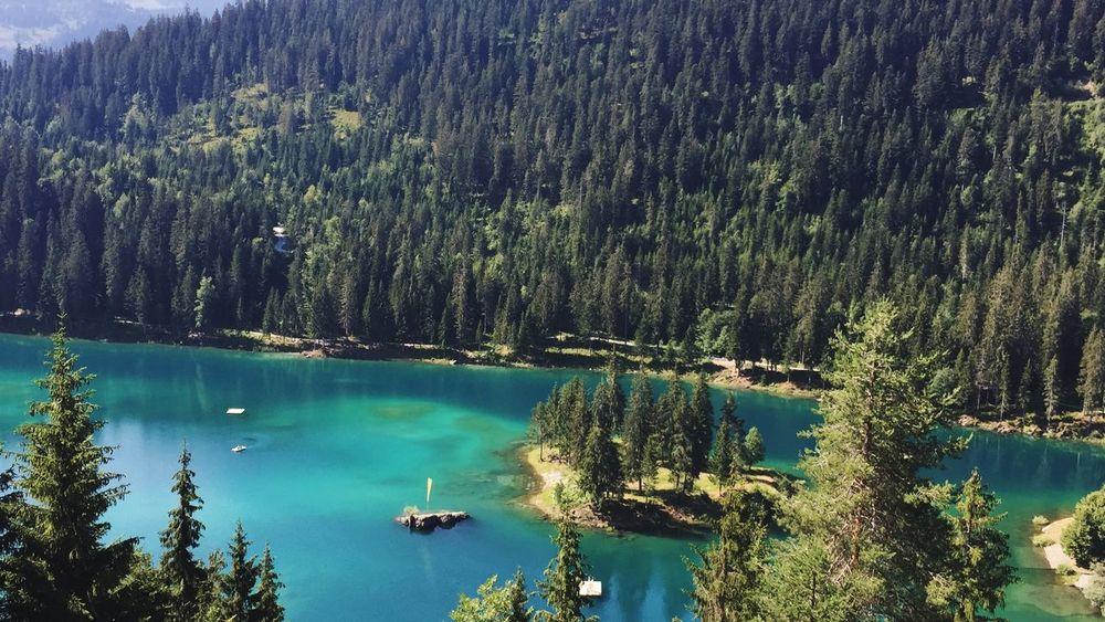 Caumasee Forest Lake Graubünden Caumasee Switzerland Tree Water Beauty In Nature Scenics - Nature Plant Tranquility Tranquil Scene
