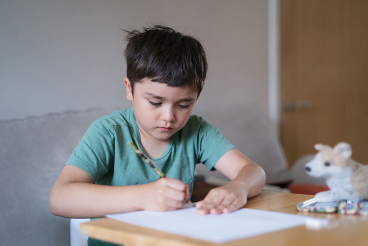 Portrait of boy holding table
