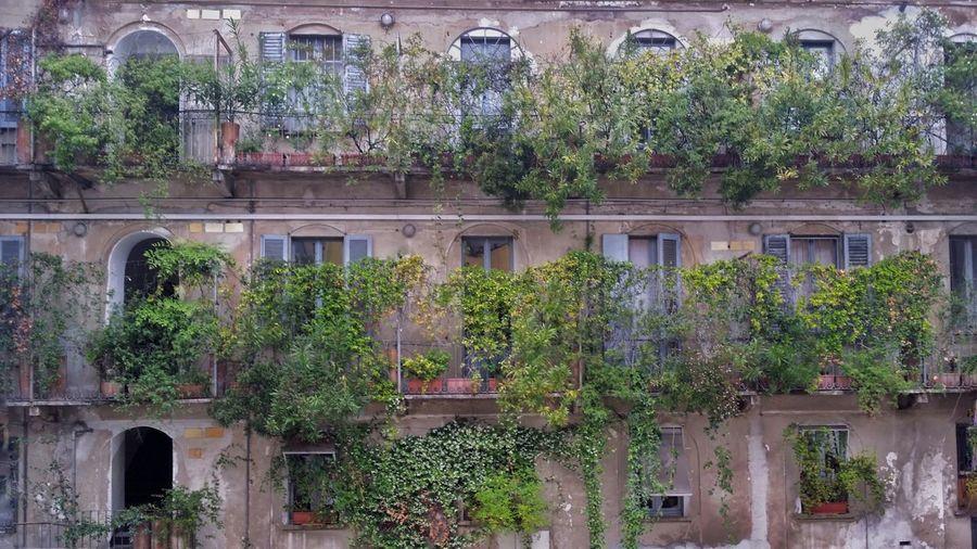 10 Corso Como,