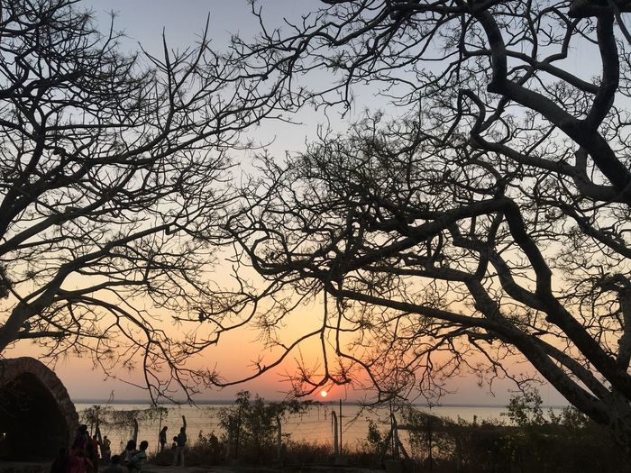 Peace ✌🏻 Water Nature Beauty In Nature Sky Outdoors Scenics Sunset Silhouette Tranquility Tranquil Scene Bare Tree Cloud - Sky Branch