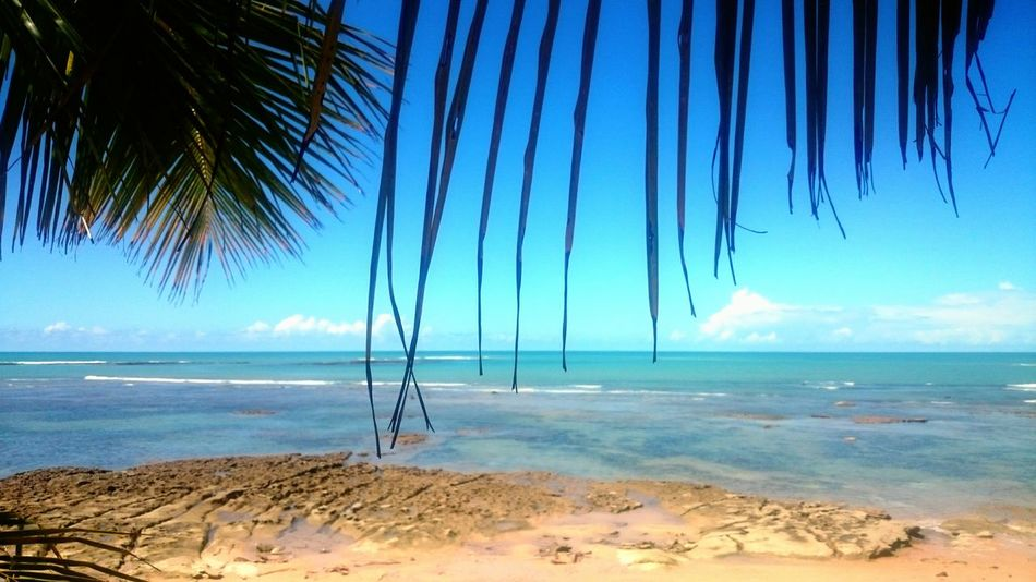 Beach Blue Water Beauty In Nature Sky Nature Travel Destinations Praia Do Espelho Bahia/brazil Brazil Porto Seguro, Bahia