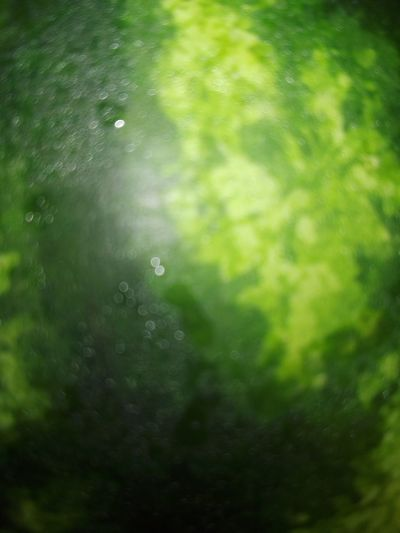 Reflection Green Color No People Defocused Close Up Watermelon Green Watermelon Pattern Close-up Wolfzuachis Wolfzuachis Photos No Person Huaweiphotography @WOLFZUACHiV Veronica Ionita WOLFZUACHiV Photos Wolfzuachiv Huawei Photography Eyeem Market On Market Edited By @wolfzuachis Backgrounds Green Color Watermelon Peel