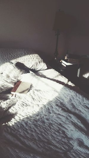 Books Read Reading Novel Bible Reflection Contemplative Introspective Introspection Peace And Quiet Still Life Morning Morning Light Freelance Life Sunrise - Dawn Waking Up Dawn Shadow Long Shadow - Shadow Fabric Sheet Cloth
