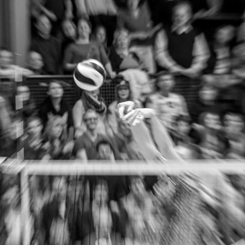Action Ball Black And White Crowd Fingers Spectators Volleyball Zoom Capturing Movement