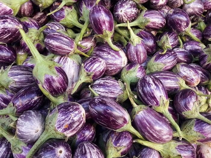 aubergines at