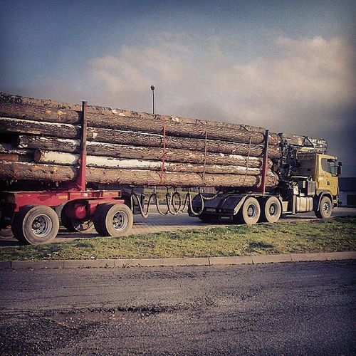 вантажівка дерево гори