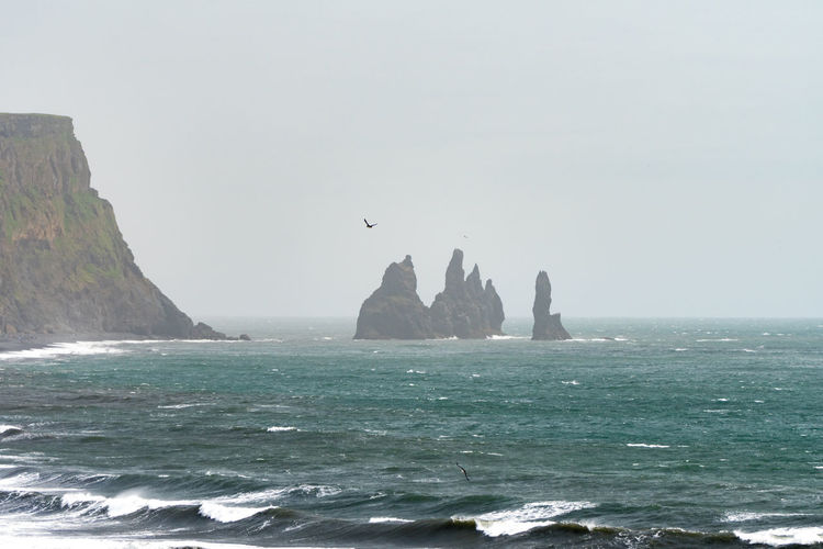 Three Atlantic Puffins circle the sea above the black sand beaches of Vik, with the Reynisdrangar sea stacks in the background on a misty summer day. Iceland Adventure Beauty In Nature Day Europe Horizon Horizon Over Water Idyllic Land Nature No People Outdoors Reynisdrangar Rock - Object Rock Formation Scenics - Nature Sea Sky Solid Stack Rock Tranquil Scene Tranquility Travel Destinations Water Waterfront