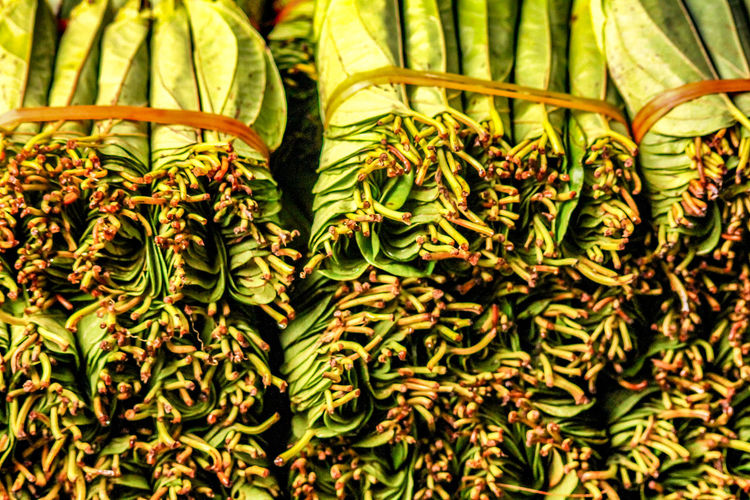 tobacco leaves Tobacco Product Fresh Tobacco Leaves Agriculture INDONESIA Indonesian Market Local Market Freshness Plant No People Close-up