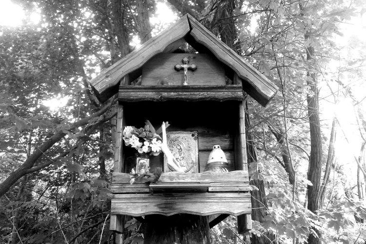Blackandwhite Monochrome Eyeemphotography Religious Art Religious Icons Cult