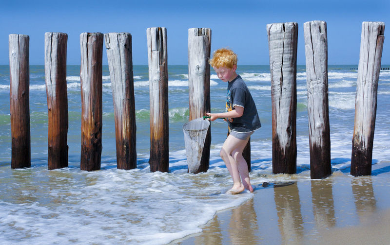Boy fishing at the shore near Cadzand. Breakwaters Leisure Activity Sea Shore Vacations Water