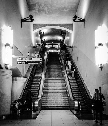 View Of Escalators